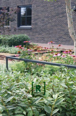 Groenr_Tuinontwerp_tuinarchitect_den Bosch-voortuin_heeswijk_Bernheze_roze_bloemen_plantframes_wilg_halfverharding_knipvormen_organische hagen_ligusterhaag_houtsnippers_tufsteen-2