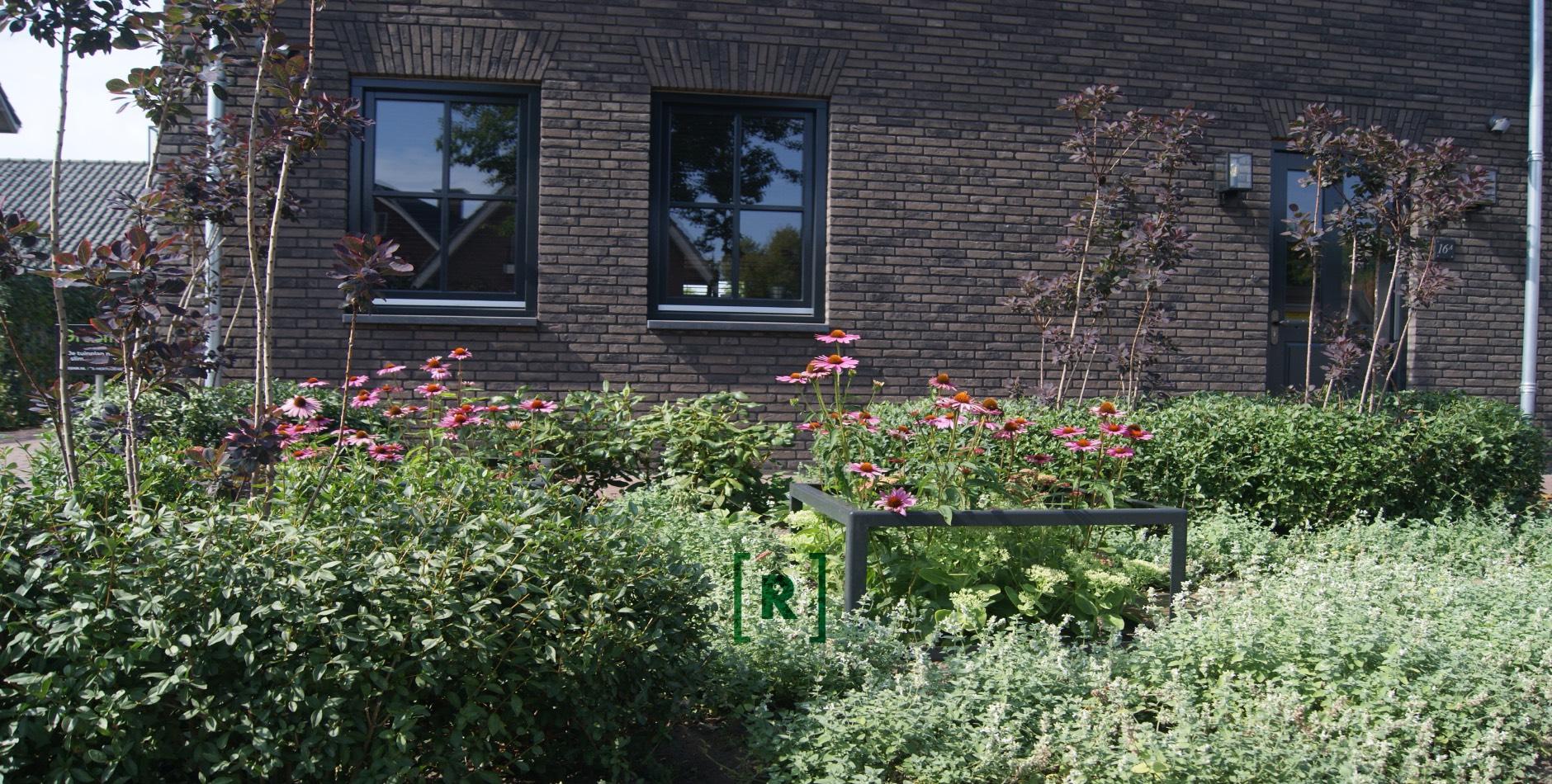 Groenr_Tuinontwerper_tuinarchitect_den Bosch-voortuin_Heeswijk Dinther_roze_bloemen_plantframes_wilg_halfverharding_knipvormen_organische hagen_Oisterwijk_Vught_Den Bosch_Uden_Veghel_Gemert_Tilburg