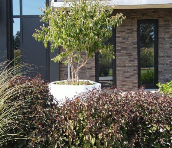 Exclusieve plantbak_Planten_beplanting_voortuin_entree_voordeur_moderne tuin