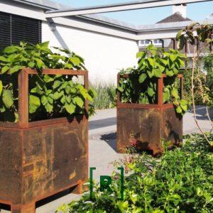 tuinontwerper_tuinarchitect_Hovenier_Plantframe_plantenbak cortenstaal_plantframe_tuinontwerper_Den Bosch_Oisterwijk_Uden_Vught